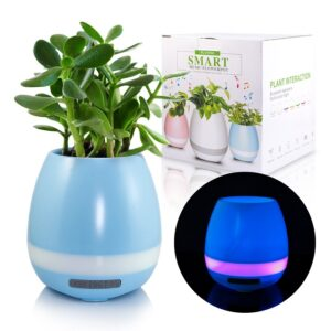 Speakers MUSIC FLOWERPORT,Blue
